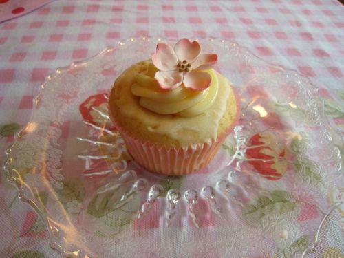 Nicole shower cupcake (2)