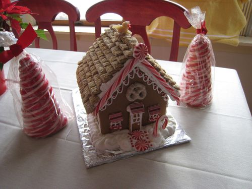 Xmas gingerbread house (20)