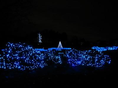 Longwood_blue